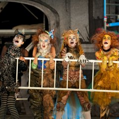 Cats  – Theater Koblenz
